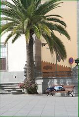 Santa Ana square 2
