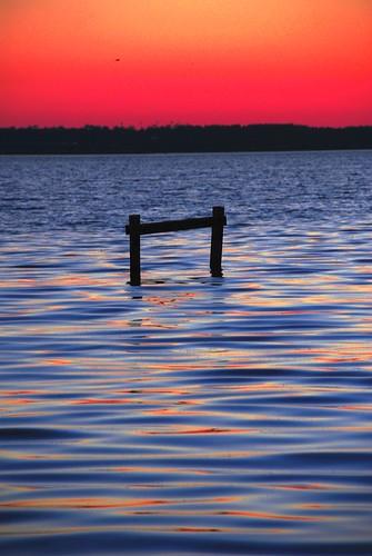 sunset bird water bay pier gate gulf florida crane piling pensacola