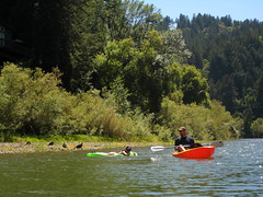 A kayaker on the Russian River near Guerneville.