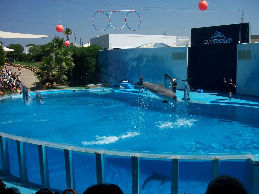 zoo marino portugal