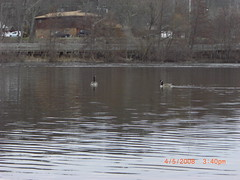 Walk03 - April 5, 2008