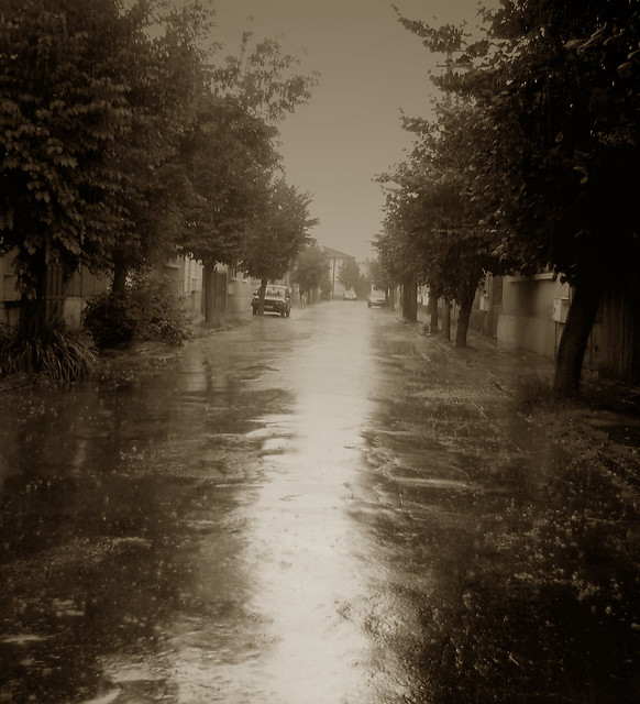 Lluvia / Rain