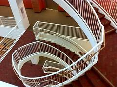 floor, wood, handrail, stairs, flooring,