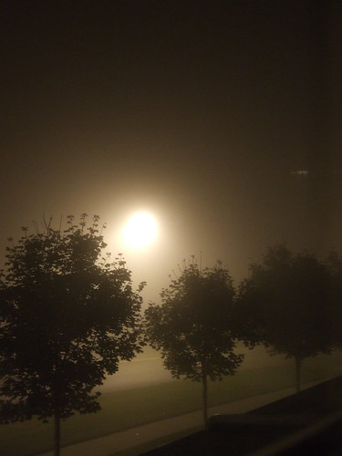 a foggy evening by spellbunny