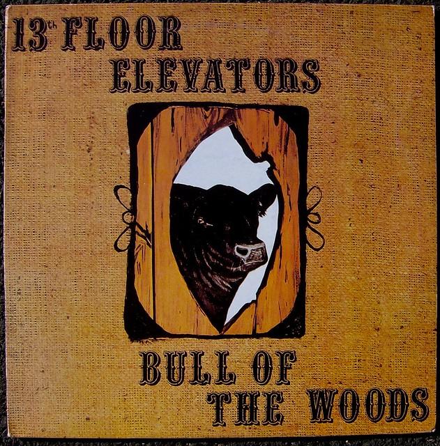 13th floor elevators bull of the woods a photo on
