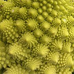 vegetable, flower, green, produce, broccoflower,