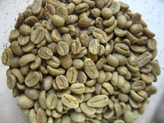 the green coffee that we roast