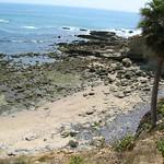 Laguna Beach Trip 21
