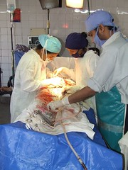 surgery, surgeon, medical, operating theater, organ,