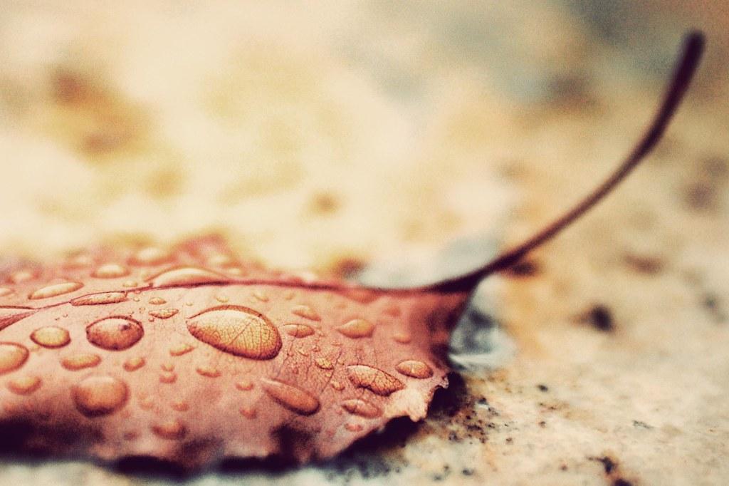 Rain I don't mind
