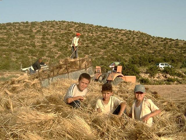 Asserwath in Ah Frah, 2003