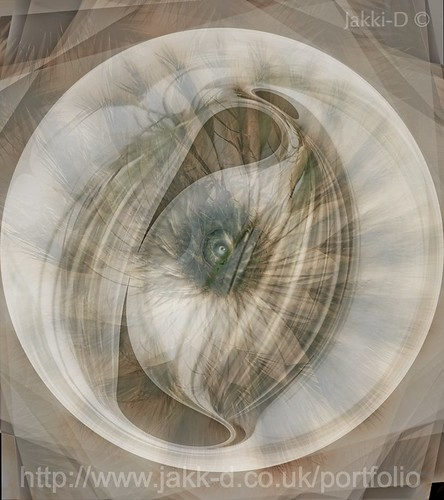 Eye-Of-Winds (THE)