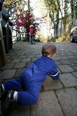 watching his big brother ride bikes    MG 5944
