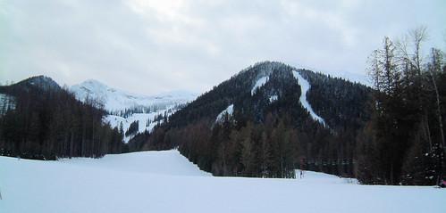 skiing fernie