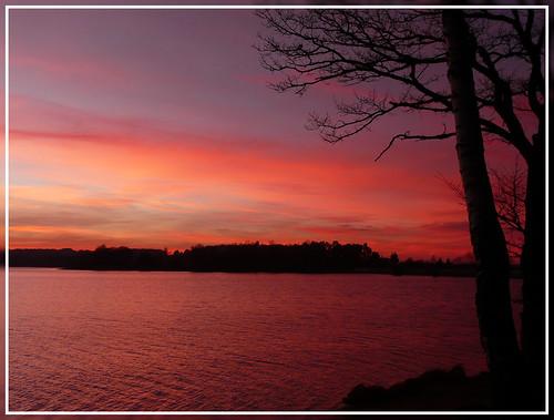 sunset sky sun lake france reflection tree nature water landscape lac lorraine vosges bouzey sanchey