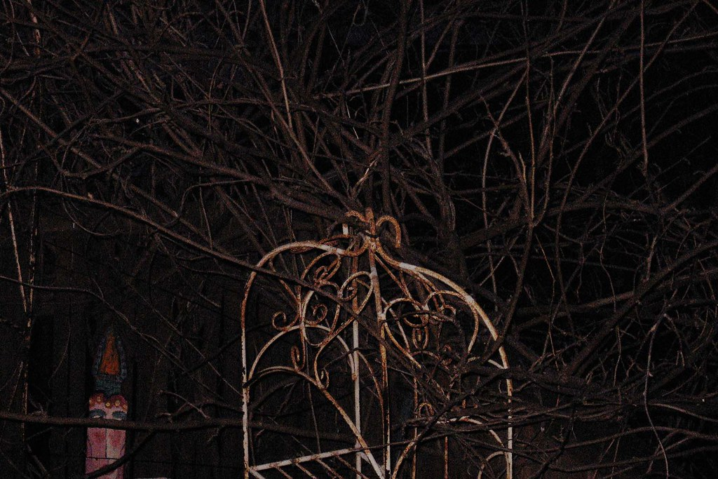 10. what I see before I go to sleep: Photo 1 of 12
