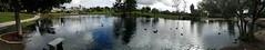 The Village Pond, Lake Forest