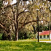 Church grounds, Hernando, Florida