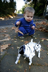 sequoia and the robopet    MG 5932