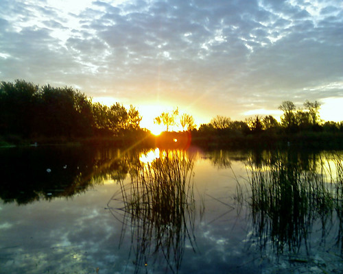 sunrise pond
