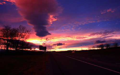 road trees light sunset sun landscape virginia diamondclassphotographer canoneos40d canon40d