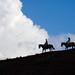 Horseback Ride up Los Cerros: Estancia Dos Lunas by longhorndave