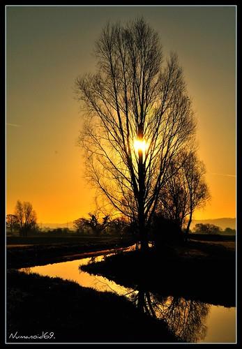 uk england reflection water sunrise river landscape dawn gloucestershire rivercam nikond300