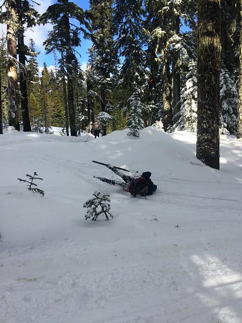 X-Country Ski Clinic 4 02/19/17
