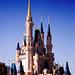 Cinderella's Castle by Etrusia UK