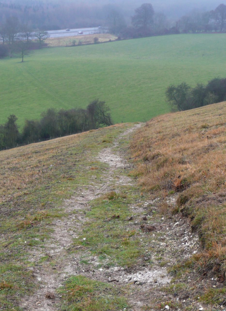Book 3, Walk 2c, Woldingham to Oxted The precipitous path leading to the M25, 1 Jan 2008.