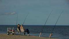 Surf fishing the outer banks of north carolina fish for Outer banks surf fishing