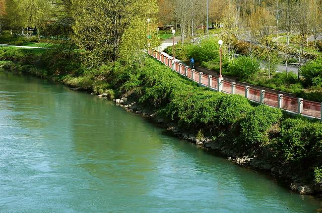 Eugene> Willamette River Bike Path