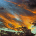 Small photo of Sky Aflame