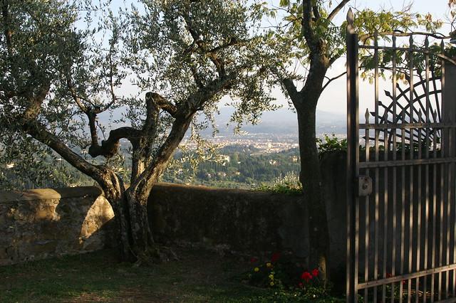 2007-T31 Firenze