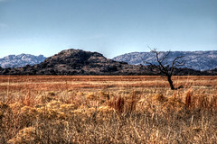 Wichita Mountains Wildlife Refuge, OK by DN Images