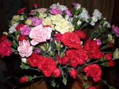 busy lizzie(0.0), carnation(1.0), annual plant(1.0), flower arranging(1.0), garden roses(1.0), cut flowers(1.0), floribunda(1.0), flower(1.0), floral design(1.0), plant(1.0), flower bouquet(1.0), floristry(1.0), pink(1.0), petal(1.0),