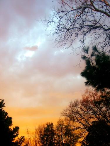 trees sunset sky virginia richmond va bellevue theview inmyneighborhood ♥avision♥