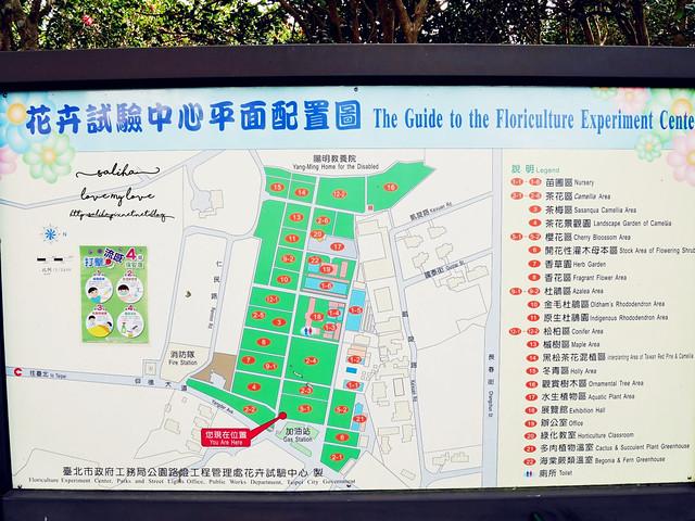 陽明山一日遊免門票景點花卉試驗中心 (3)