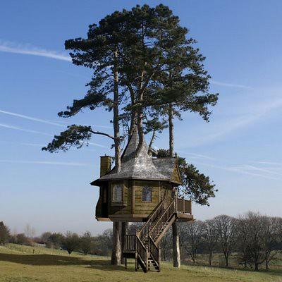 Tree_Houses_01