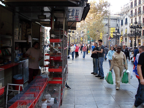 Bird Stalls at La Rambla Barcelona