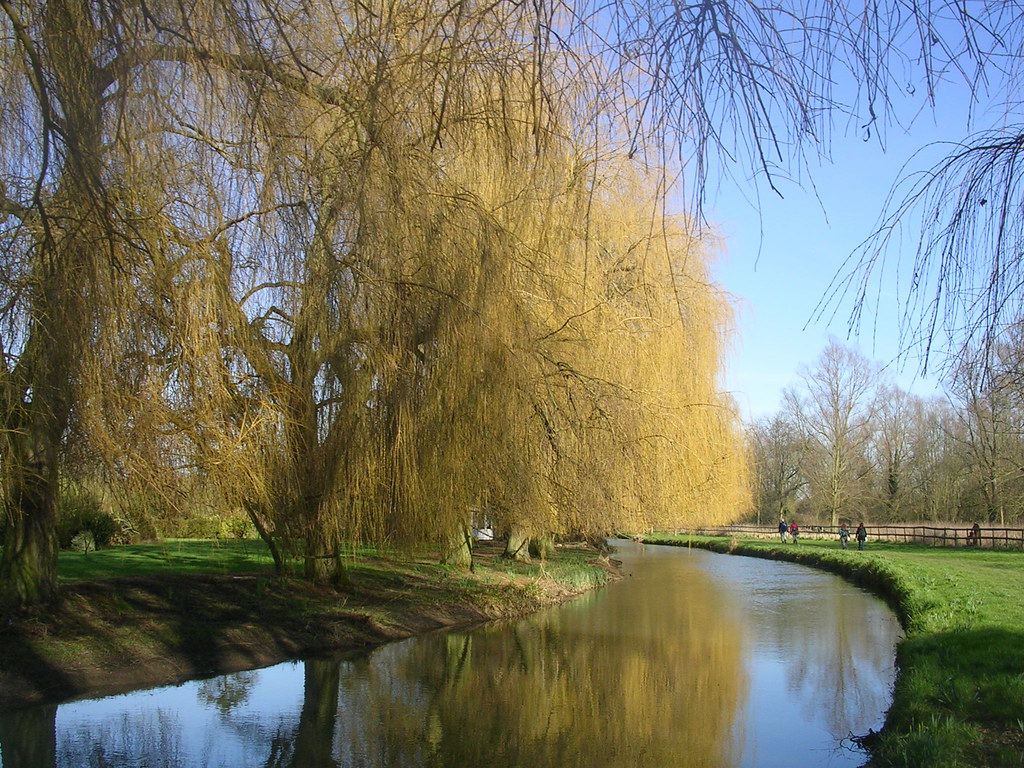 River Blackwater Kelvedon circular via Coggeshall