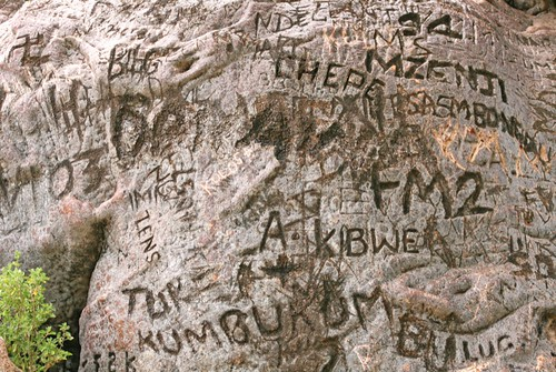 Carving in a Baobab Tree, Lake Manyara National Park