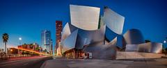 Walt Disney Concert Hall Pre-Dawn