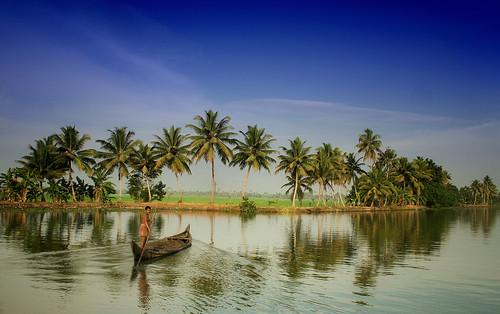 travel india water river palms boat tranquility kerala row palm pole rowing kollam boatman southindia ashtamudi allapey areyarey rowman aboutthewayhisriverflows