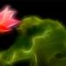 Fractalius Red Lotus Flower with green leaf / green / red / nature /  on black background - IMGP8189 - , ハスの花, 莲花, گل لوتوس, Fleur de Lotus, Lotosblume, कुंद, 연꽃, by Bahman Farzad