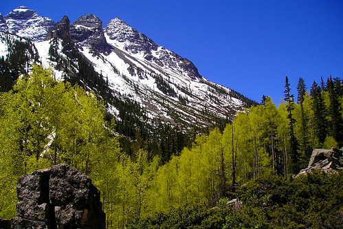 Aspens and Mountains 2