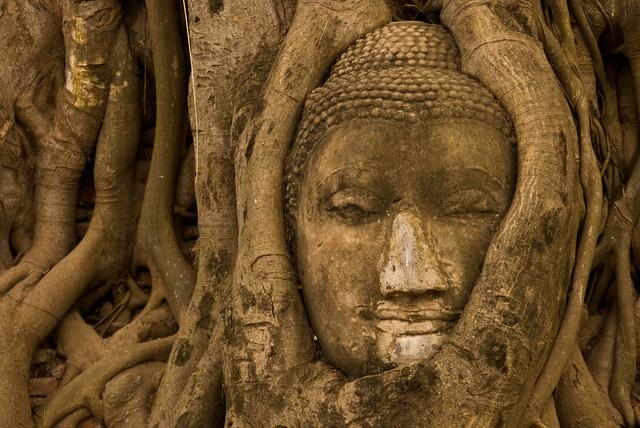 tailandia traveldreams 2014