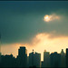Small photo of Skyline