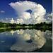 mirrored explosion by Soumya Bandyopadhyay