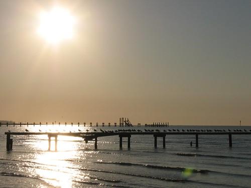 ocean reflection gulfofmexico birds sunrise mississippi pier biloxi